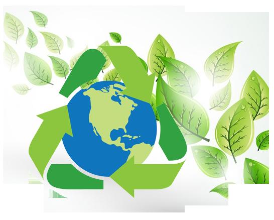 consultanta de mediu